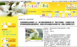 飼養寵物兔有哪些管道
